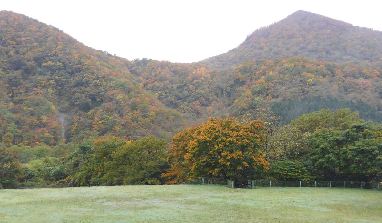 二口峡谷、三方倉山が紅葉中。