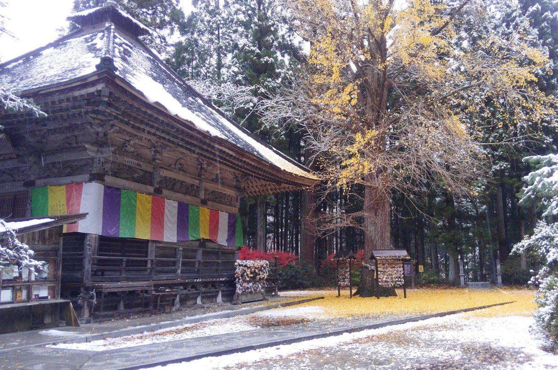 黄色と白の秋保大滝不動尊