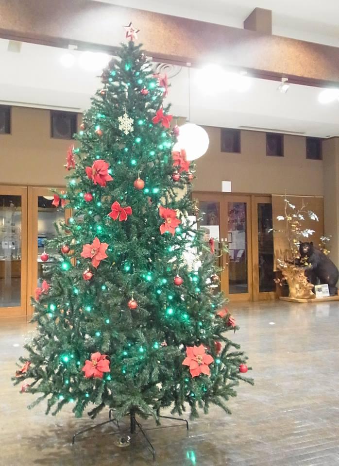 大きなクリスマスツリー‼